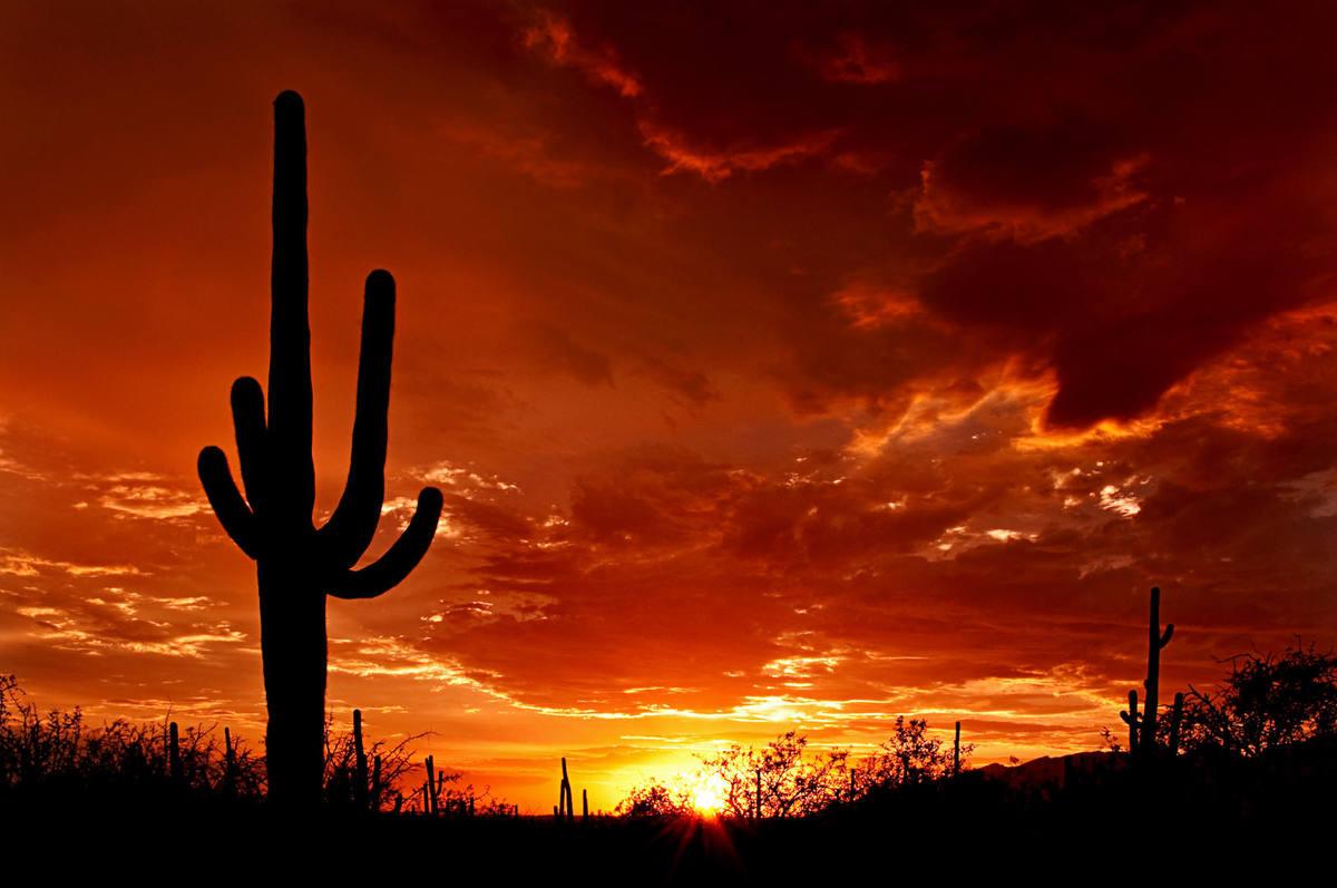 Η Contours Rx Γιορτάζει μια Επιτυχημένη Αρχή στο Ranch Canyon